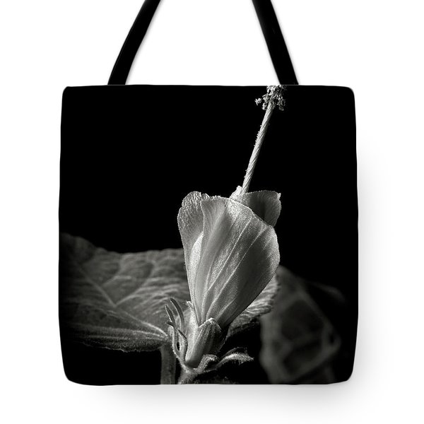 Turk's Cap In Black And White Tote Bag