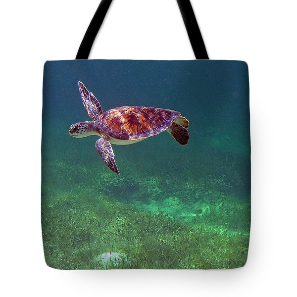 Turning In Light Tote Bag