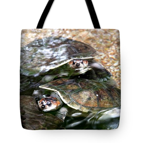 Turtle Two Turtle Love Tote Bag