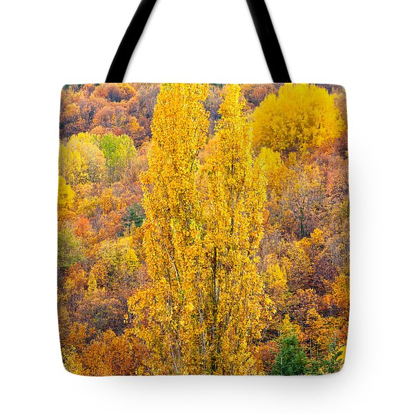 Tote Bag featuring the photograph Tuscany Landscape  by Luciano Mortula