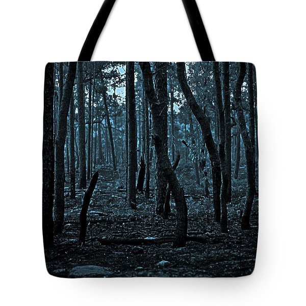 Tote Bag featuring the photograph Twilight In The Smouldering Forest by DigiArt Diaries by Vicky B Fuller
