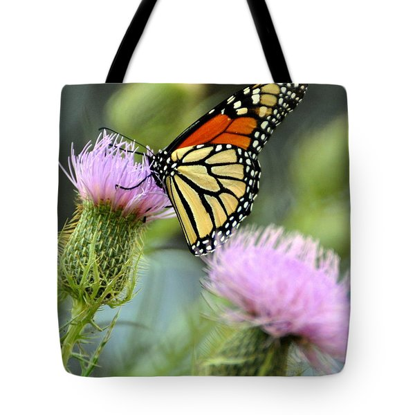 Twin Thistle Butterfly Tote Bag by Marty Koch