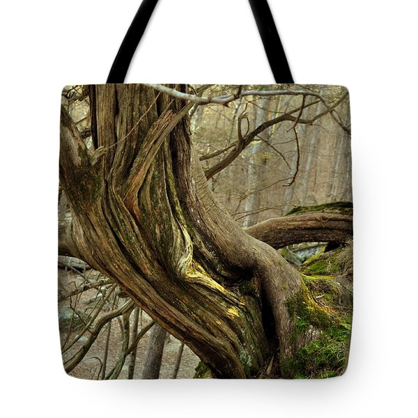 Twisted Cedar Tote Bag by Marty Koch