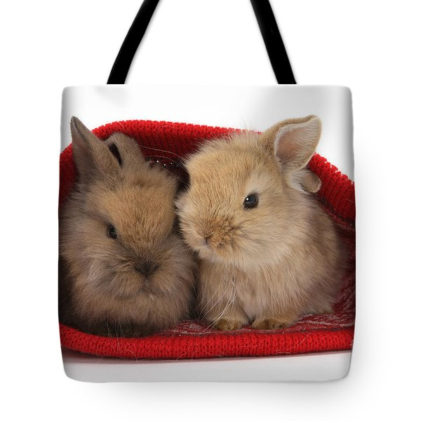 Two Baby Lionhead-cross Rabbits Tote Bag by Mark Taylor