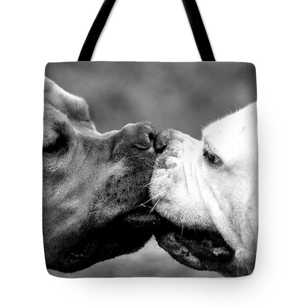 Two Dogs Kissing Tote Bag