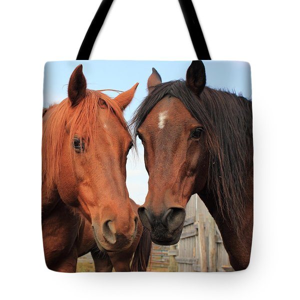 Two Horses Tote Bag