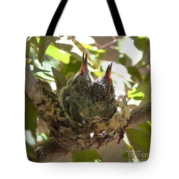 Two Hummingbird Babies In A Nest 3 Tote Bag by Xueling Zou