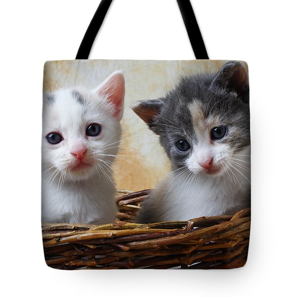 Two Kittens In Basket Tote Bag by Garry Gay