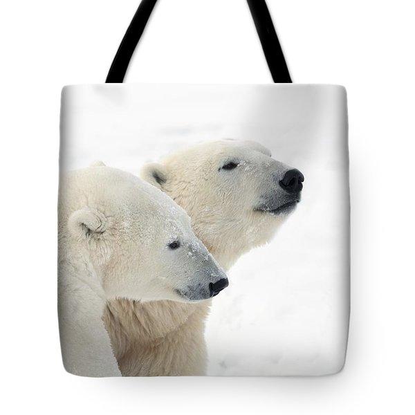 Two Polar Bears Ursus Maritimus Showing Tote Bag by Richard Wear