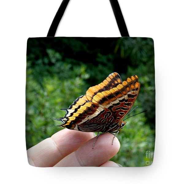 Tote Bag featuring the photograph Two Tailed Pasha by Lainie Wrightson