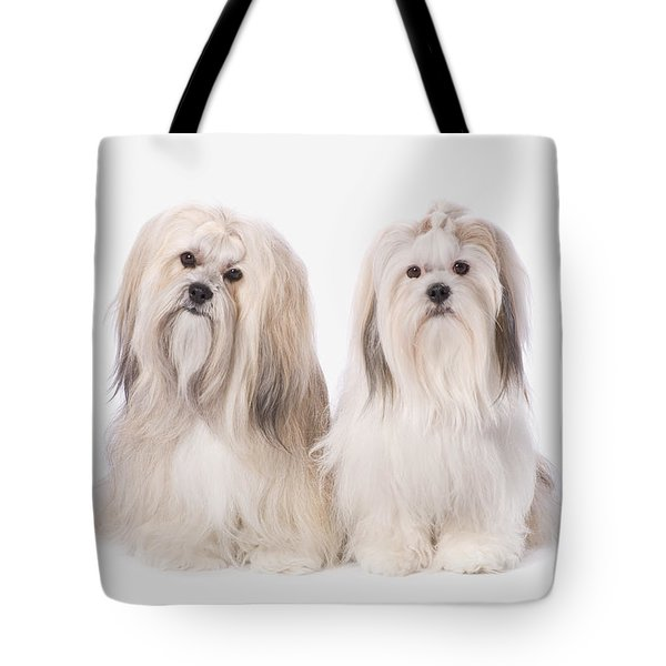 Two White Lhasa Apso Puppies St. Albert Tote Bag by Corey Hochachka