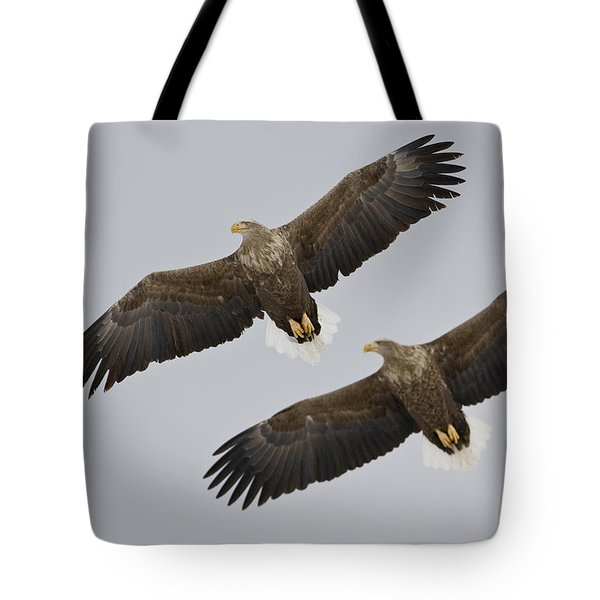 Two White-tailed Eagles In Flight Side Tote Bag by Roy Toft