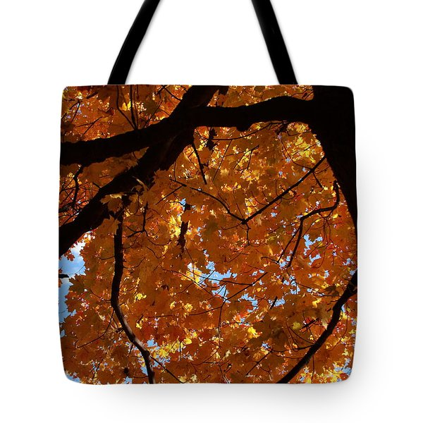 Under The Canopy Tote Bag by Lyle Hatch
