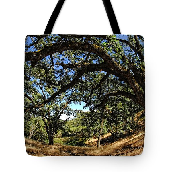 Under The Oak Canopy Tote Bag by Donna Blackhall