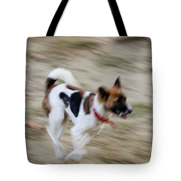 Tote Bag featuring the photograph Unleashed by Fotosas Photography