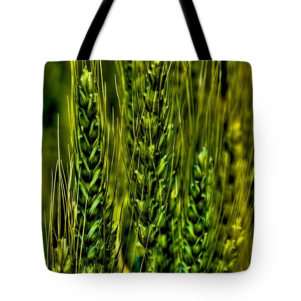 Unripened Wheat Tote Bag by David Patterson