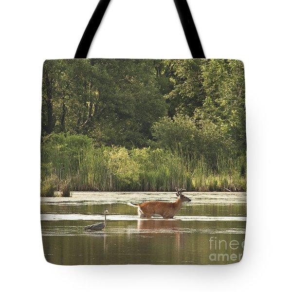 Unusual Pair  Tote Bag