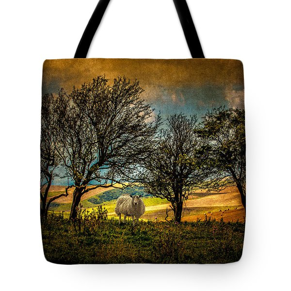 Tote Bag featuring the photograph Up On The Sussex Downs In Autumn by Chris Lord