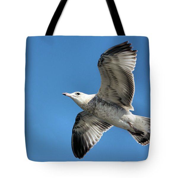 Up Up And Away Tote Bag by Kristin Elmquist