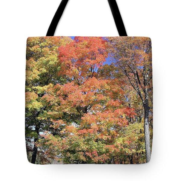 Upj Campus Autumn  Tote Bag
