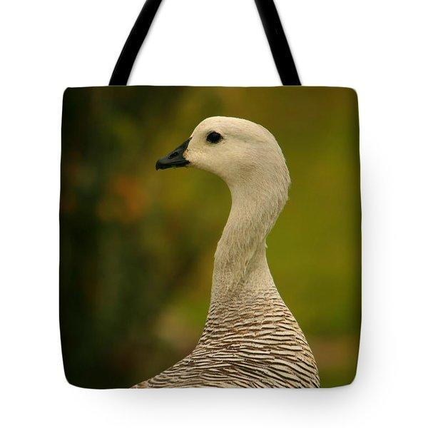 Upland Goose Portrait Tote Bag