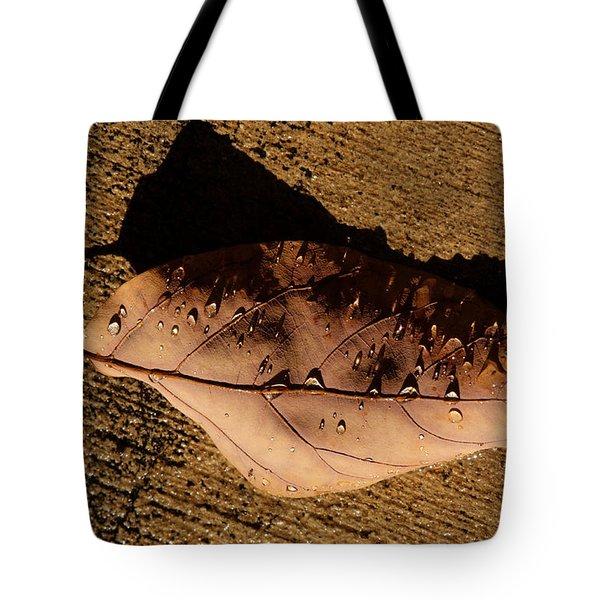 Upsidedown Brown Tote Bag by Joe Schofield