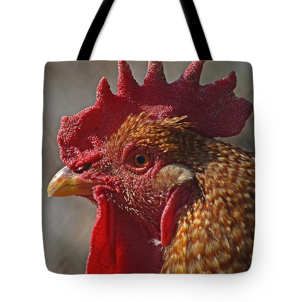 Urban Rooster Tote Bag by Lisa Phillips