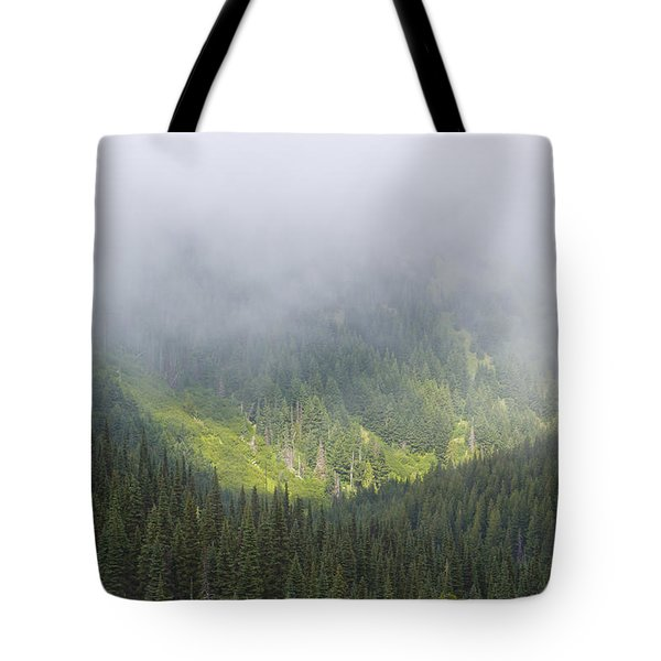 Valley Light Tote Bag by Heidi Smith