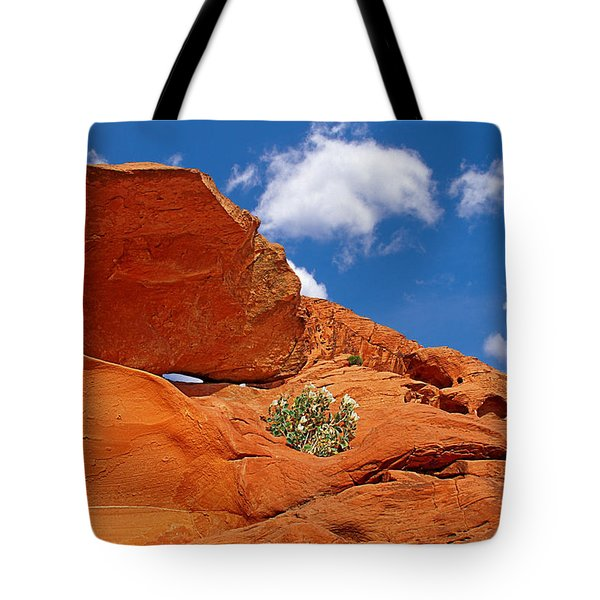 Valley Of Fire - Adventure In Color And Beauty Tote Bag by Christine Till