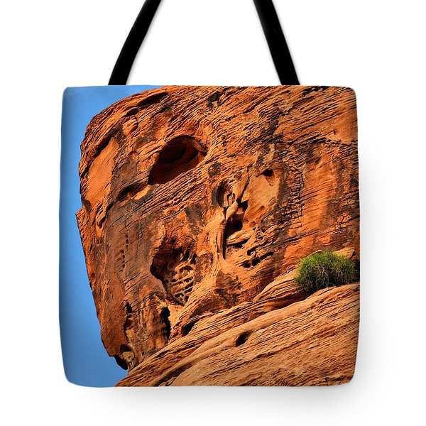 Valley Of Fire Nevada - A Special Place Tote Bag by Christine Till