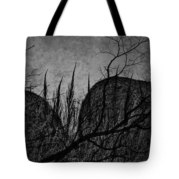 Valley Of Sticks Tote Bag by Empty Wall