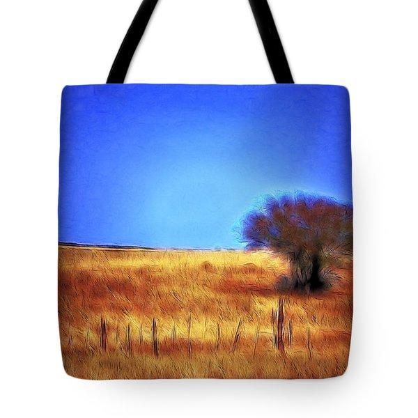 Valley San Carlos Arizona Tote Bag