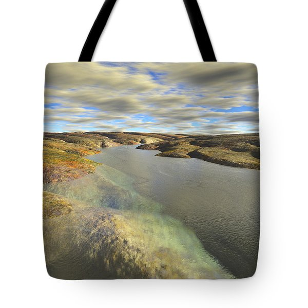 Valley Stream Tote Bag by Mark Greenberg