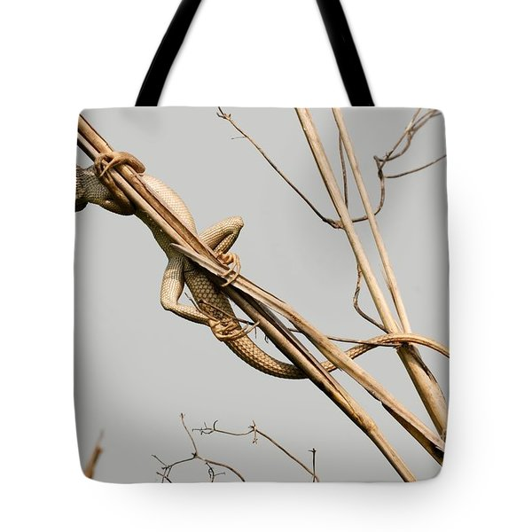 Tote Bag featuring the photograph Vantage Point by Fotosas Photography