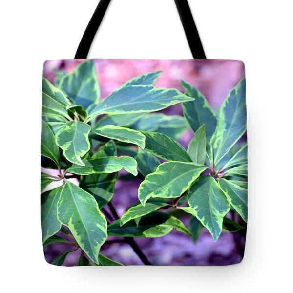 Varigated Verde Tote Bag by Maria Urso