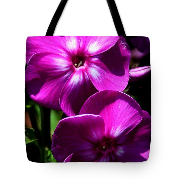 Tote Bag featuring the photograph Vibrant by Karen Harrison