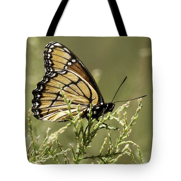 Tote Bag featuring the photograph Viceroy Butterfly by Betty Depee