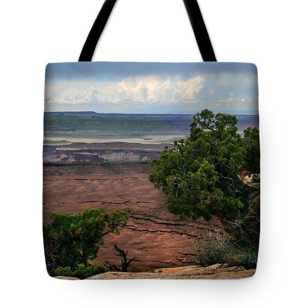 View Of Canyonland Tote Bag by Robert Bales