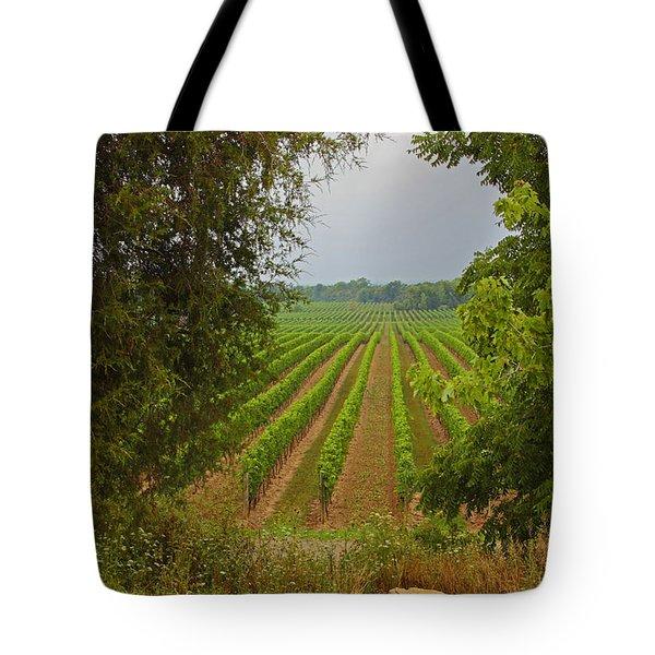 Vineyard On The Bench Tote Bag by John Stuart Webbstock
