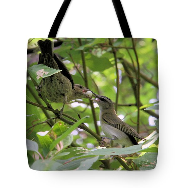 Vireo And Cowbird Tote Bag