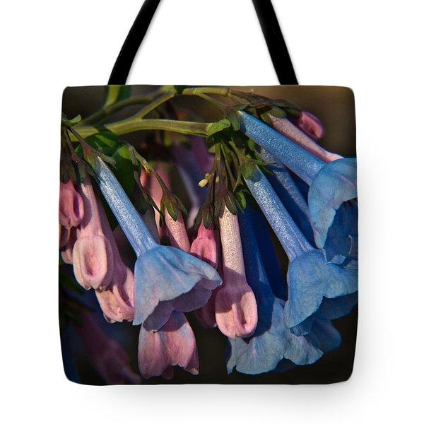 Virginia Bluebells 11 Tote Bag by Douglas Barnett