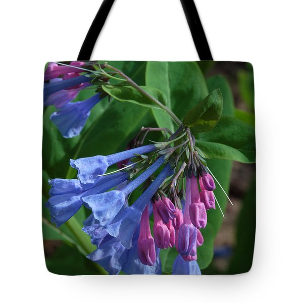 Tote Bag featuring the photograph Virginia Bluebells by Daniel Reed