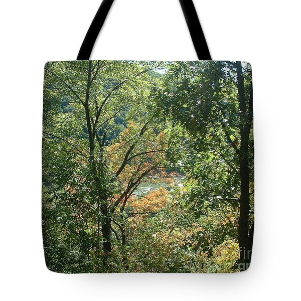 Virginia Walk In The Woods Tote Bag by Mark Robbins