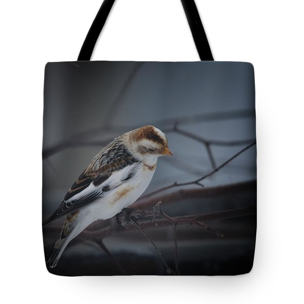 Visiter From The North Country Tote Bag