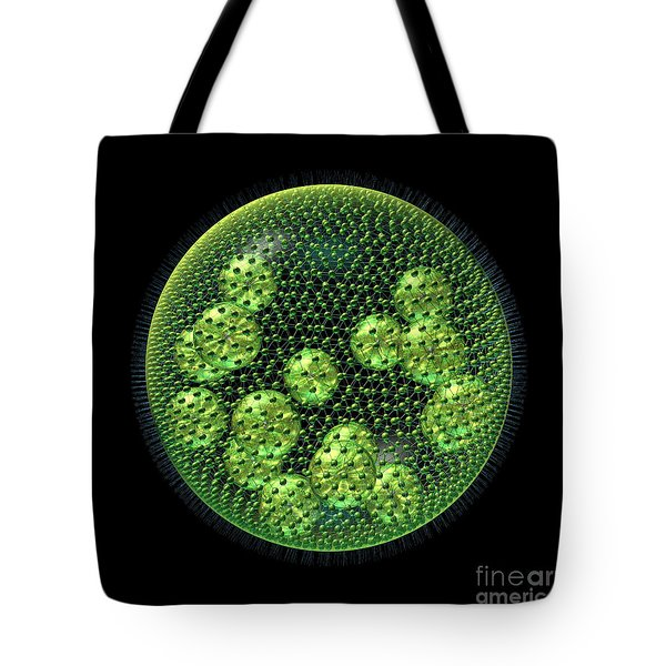 Tote Bag featuring the digital art Volvox by Russell Kightley