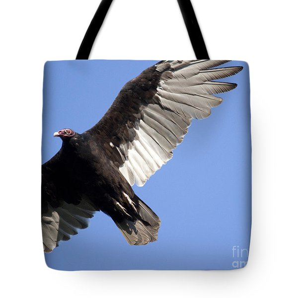 Vulture Tote Bag by Jeannette Hunt