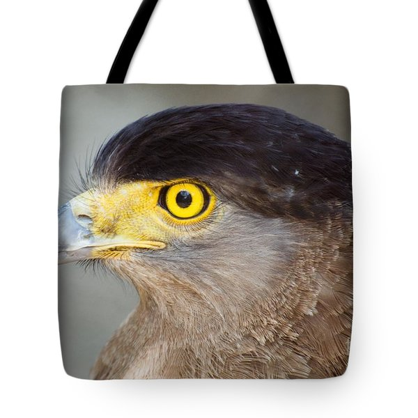 Tote Bag featuring the photograph Waiting For Prey  by Fotosas Photography