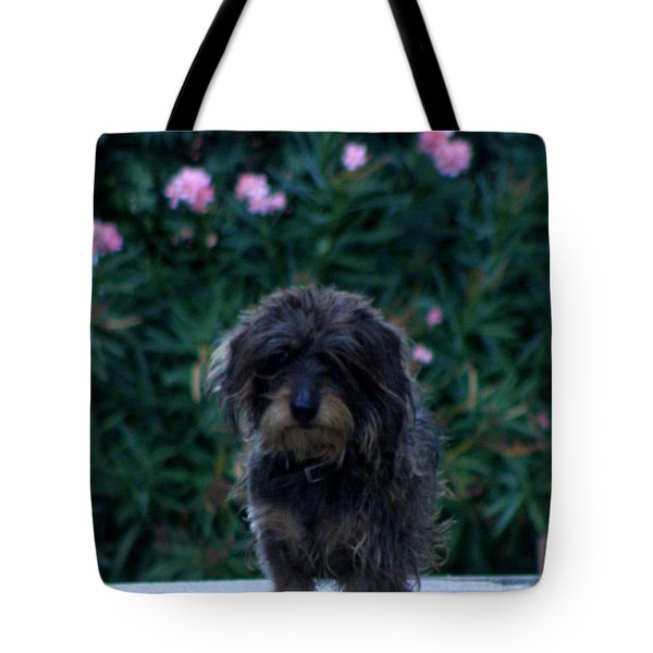 Tote Bag featuring the photograph Waiting by Lainie Wrightson