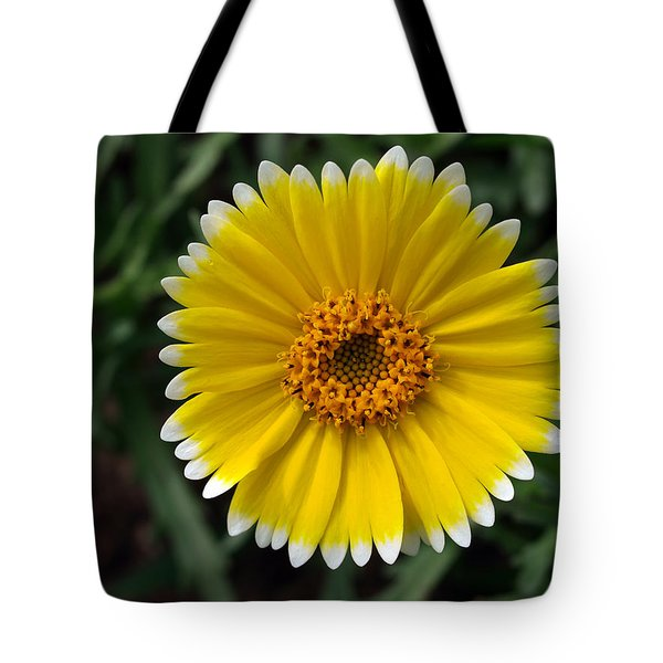 Tote Bag featuring the photograph Wake Up by Joe Schofield