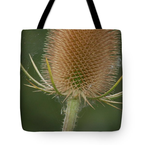 Tote Bag featuring the photograph Wales by Tam Ryan
